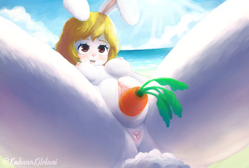 nami from piece one naked No game no life clothing